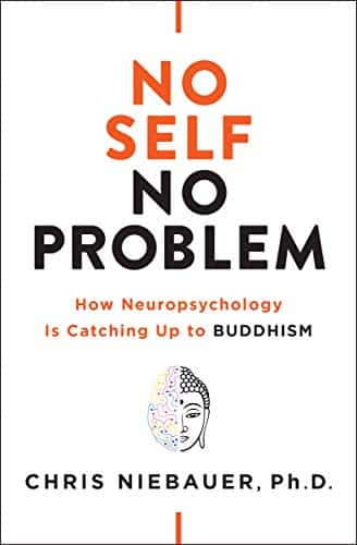 No Self, No Problem How Neuropsychology Is Catching Up to Buddhism