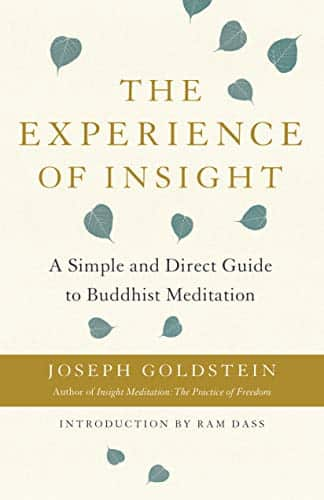 The Experience of Insight A Simple and Direct Guide to Buddhist Meditation