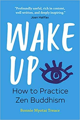 Wake Up How to Practice Zen Buddhism